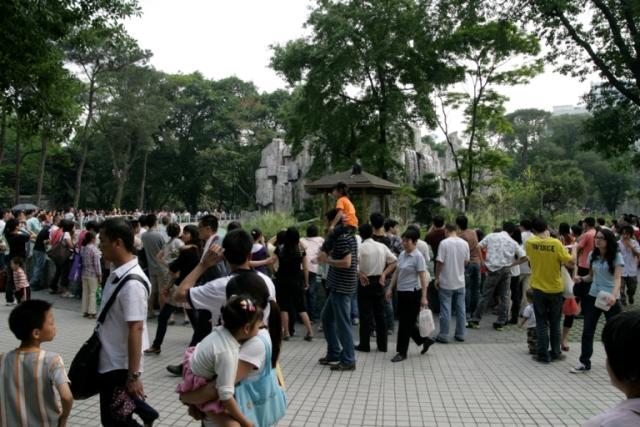 广州动物园五一迎游客14万 五一期间,广州动物园迎来了客流高峰,三天时间共接待游客约14万人。节日期间,公园推出的黑熊三宝齐亮相、孔雀盛典等节目受到了游客的追捧。尤其是出生不久的黑熊三宝,一亮相即成为游人们的新宠,活泼精灵的小黑熊在游客面前摆出各种可爱的pose,引得游人开怀大笑。春暖花开的季节里,孔雀竞相开屏,成功吸引游人的目光,成为公园里一道亮丽的风景线。装饰一新的锦鳞苑重新开门迎客,小朋友们不仅可以在这里认识千奇百怪的鱼类世界,还可尽享鱼乐无穷之趣,与鱼儿们来个亲密接触。在喜庆热烈