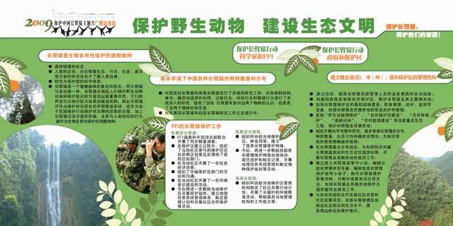 广州动物园>>南宁动物园长臂猿保护月宣传设计展板