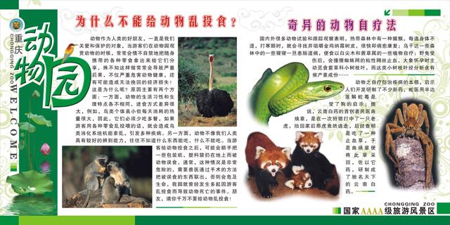 重庆动物园第十三届爱鸟周鸟类科普知识展览