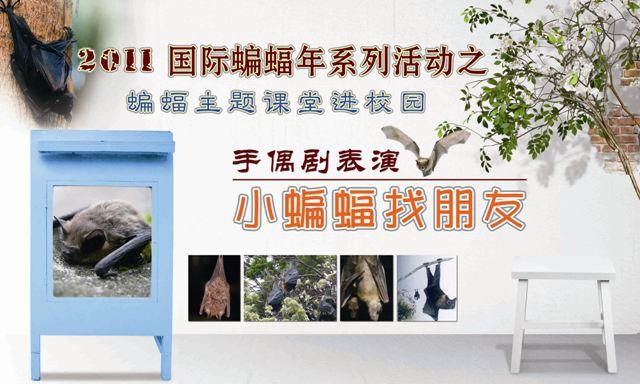 南京红山森林动物园蝙蝠年系列活动