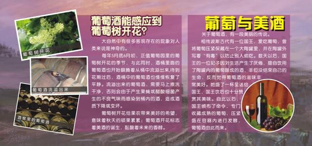 广州动物园>>武汉植物园葡萄园科普展板