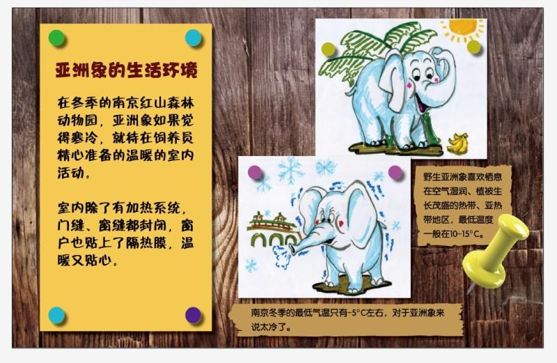 南京红山森林动物园动物展馆宣传栏