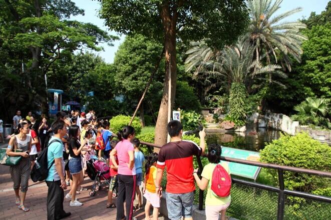 """游广州动物园"
